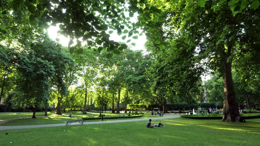 Russell Square London. Backlit Park Scene. Backlit tree, grass and people in a park. Could be anywhere but is Russell Square in central London. | Shutterstock HD Video #28467457
