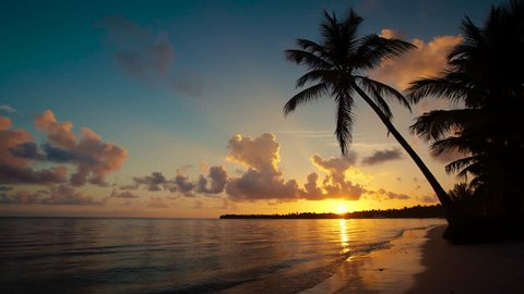 Sunrise over tropical island beach and palm trees, Punta Cana, Dominican Republic