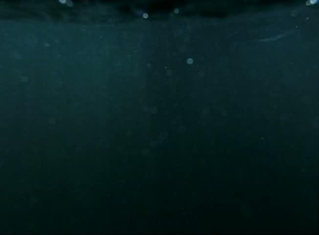 Underwater Bikini Girl HS11 Slow Motion Ocean Waves 240fps