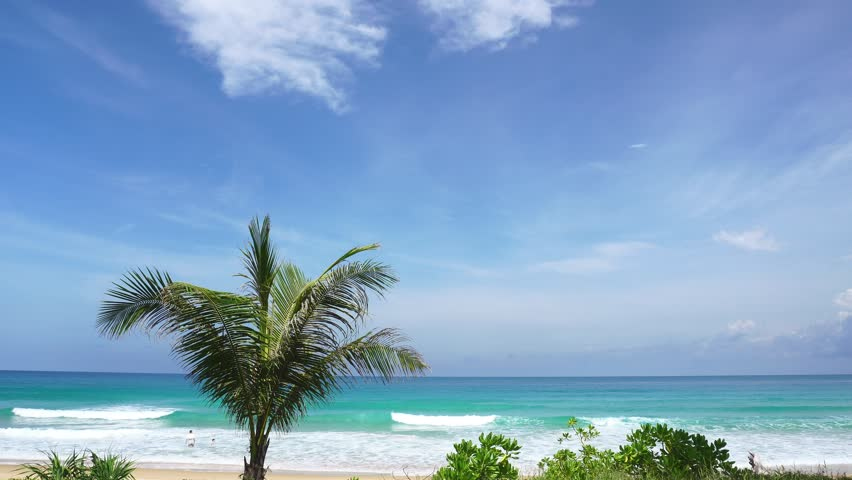 Palm trees with tropical sea in summer season in phuket thailand | Shutterstock HD Video #28735156