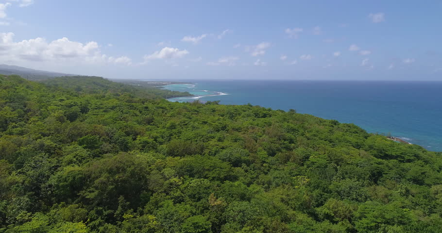 Aerial Shot Fly Over Exotic Caribbean Ocean Coast Jamaican Nature Landscape Tropical Holiday Destination Summer Getaway Concept Slow Motion 4k