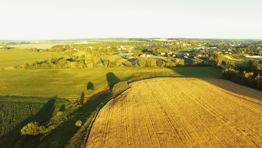AERIAL VIEW: Flight over the beautiful sunlit wheat field in sunset. | Shutterstock HD Video #28778986