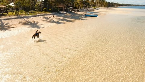 Riding a horse at the beach. Aerial view:Rider galloping on horseback along the beach. Man riding horses on the beach in a sunny summer day. Siargao, Philippines. 4K video. Travel concept. Aerial