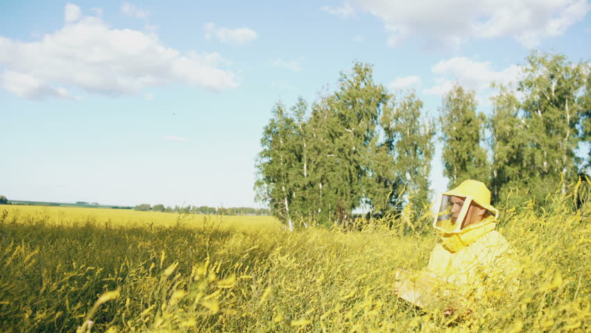Pan shot of beekeeper man with wooden frame walking in blossom field while working in apiary   Shutterstock HD Video #28920676