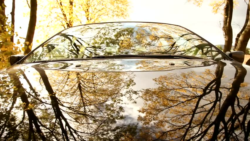Pov on-board-camera on a hood of a car driving through a forest.  #2895823