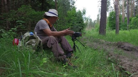 Cameraman in Forest: Mature man a scientist plants with backpack in hat Sits near the camera and gathers wild berries of strawberries on a edge of green pine forest