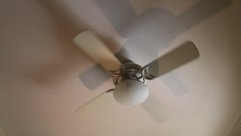 Fan of  ceiling