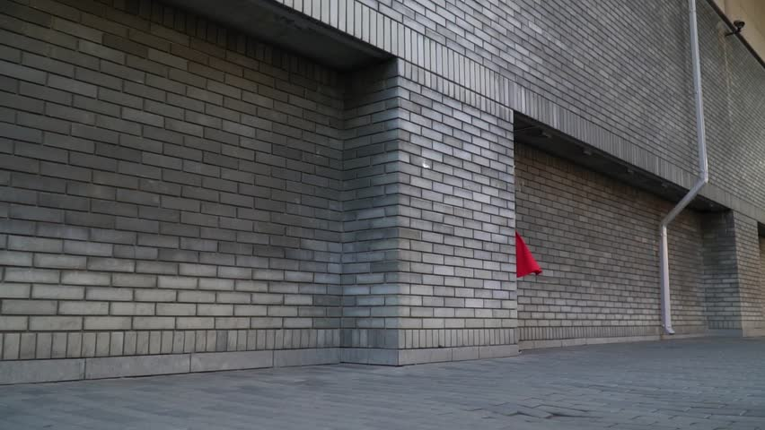 A girl with long hair in a red skirt and a black topic emerges from behind a building and dances on the street, slow motion #29866636