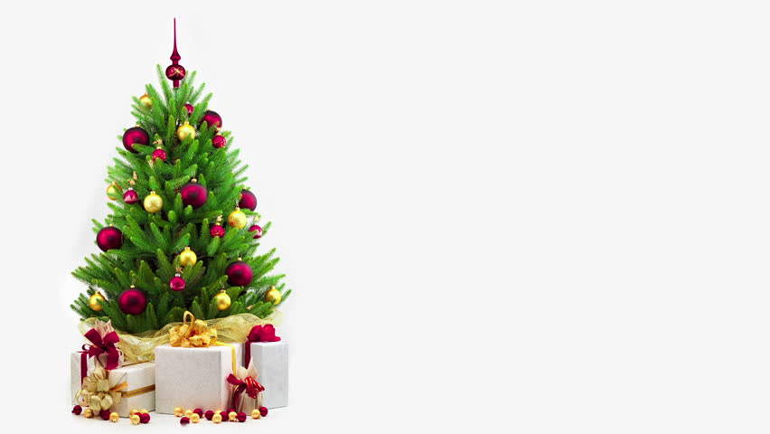 Christmas Tree White Background.Christmas Tree Decoration On White Stock Footage Video 100 Royalty Free 3004576 Shutterstock