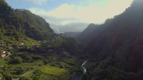 Early Morning in the Misty Valleys of Madeira with Lush Green Jungle and Forests