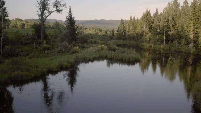 Beautiful view of a still Adirondack creek.