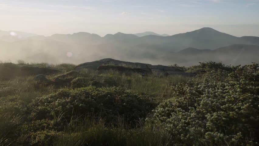 Majestic fog rolls over mountain summit during sunrise.