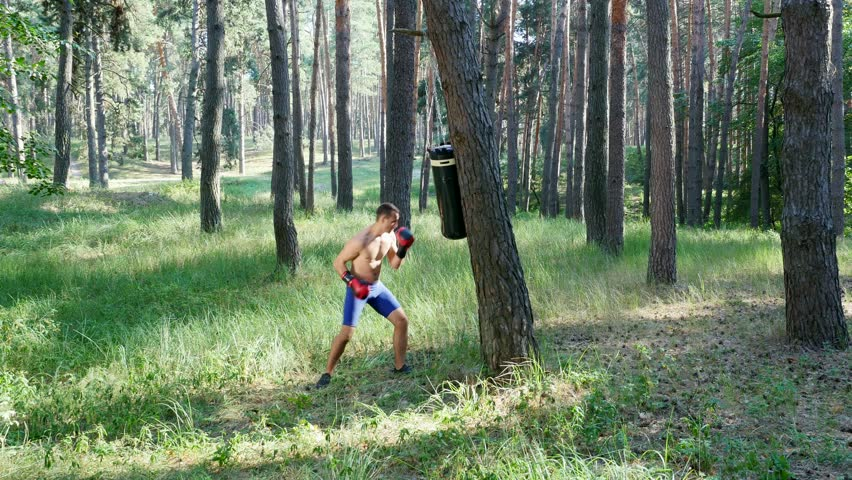 In Boxing Gloves, Young Athletic Men With Bare, Naked Torsos, Box, Practice The -6698