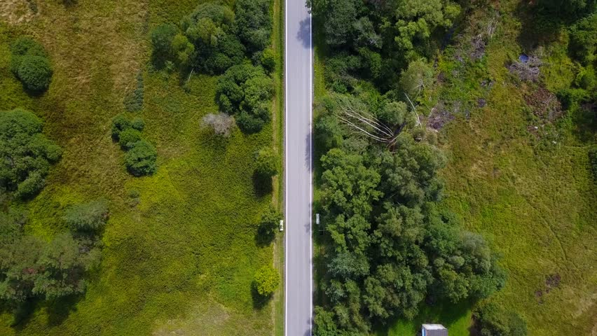 Lush green country road - Top down aerial view