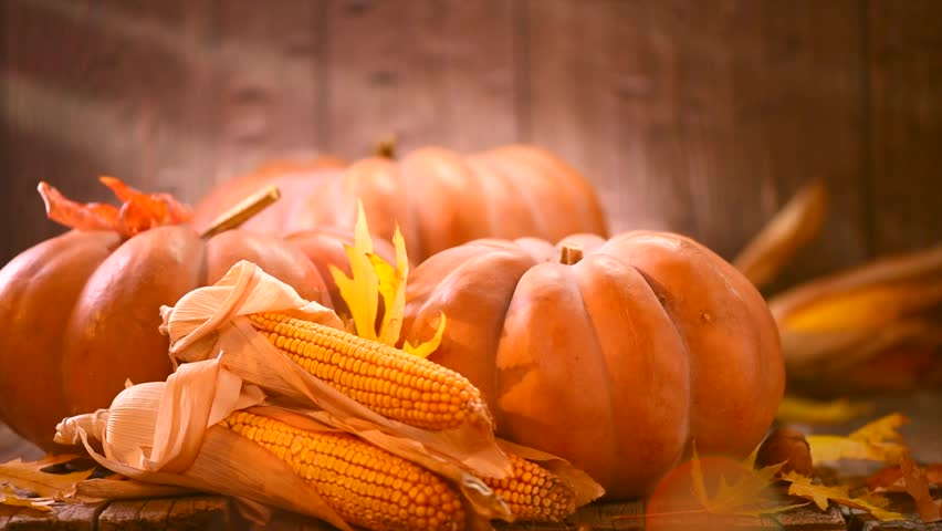 Thanksgiving Day. Pumpkin, Squash. Happy Thanksgiving Day wooden Table Background decorated with pumpkins, corn comb, candles and autumn leaves garland. Holiday Autumn festival scene, Fall, Harvest 4K   Shutterstock HD Video #30693826