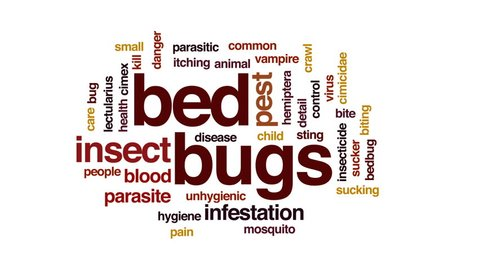 Bed bugs animated word cloud, text design animation.