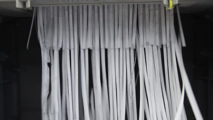 Document shredded by shredder