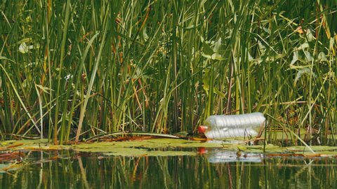 Garbage, Plastic Bottle In The River. Lake contaminated debris on the shore in the reeds.