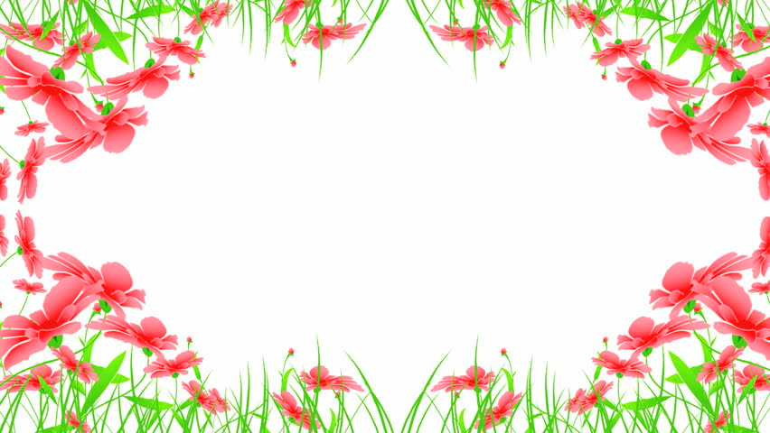 Growing Flowers Frame, 3d Animation Stock Footage Video