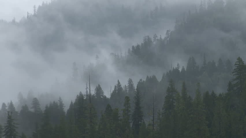 Haunting, spectral mists move fluidly from right to left around and through a