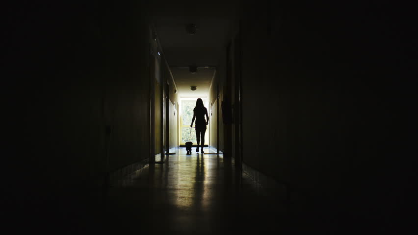 Dog And Person Silhouette In Hallway Slow Mov 4K. Static Wide Shot Of  Person With