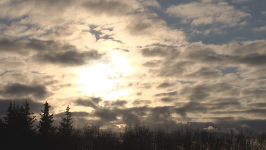 Early evening, sun setting, clouds moving left to right, obscuring the sun, spruce and willow forming horizon, lens flare