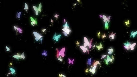 butterflies,colorful