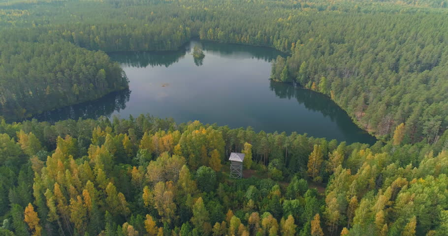 Aerial shot of wild forest lake in autumn with watchtower