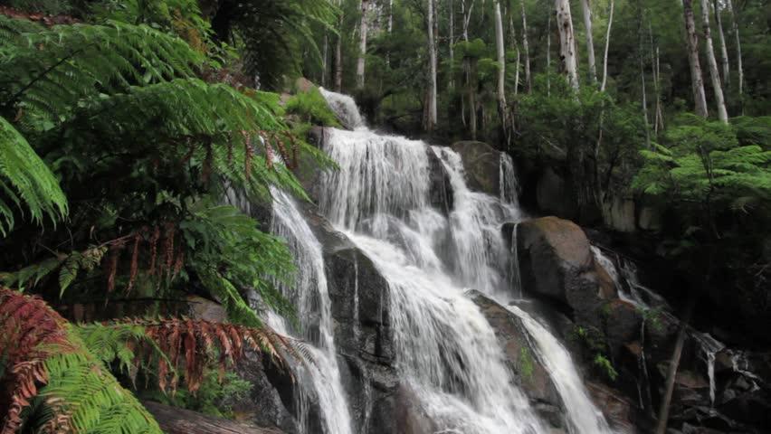 Rushing waterfall in the rainforest, Noojee, Victoria, Australia