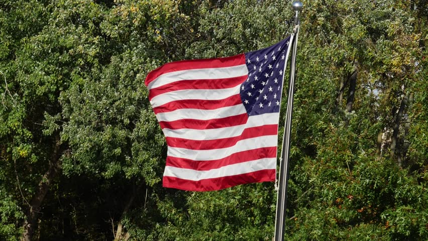 American Flag Blowing the Wind Trees in Background Green Super Slow Motion #31651693