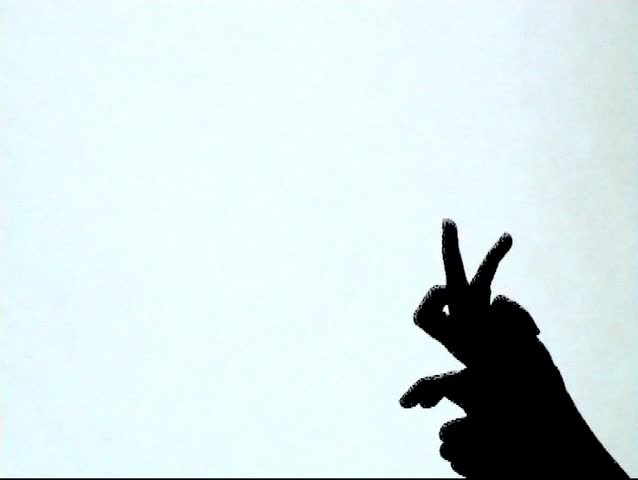 Shadow Play: Rabbit Stock Footage Video (100% Royalty-free) 31656 |  Shutterstock