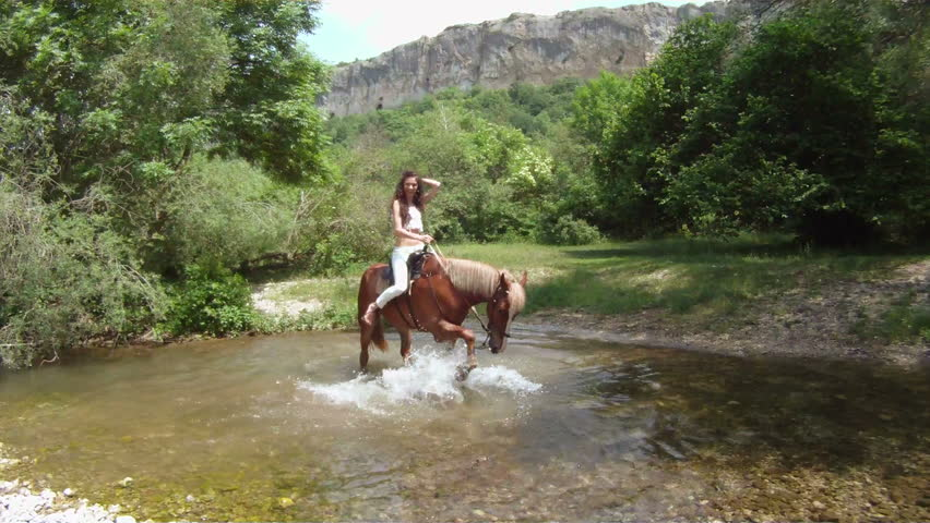 Rebellious horse standing in a middle of a river.