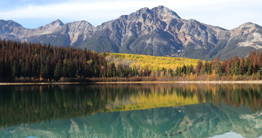 Yellow aspens reflected in the Rocky Mountains 4K