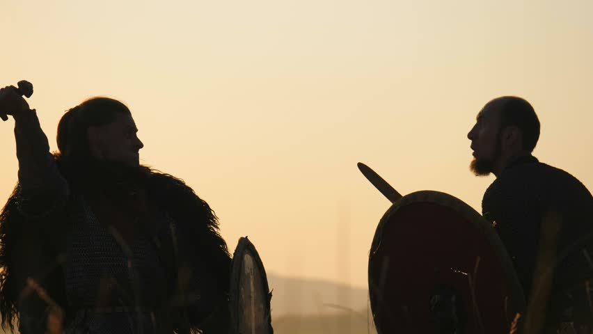 Silhouettes of warriors Viking are fighting with swords and shields. Contre-jour | Shutterstock HD Video #32043946