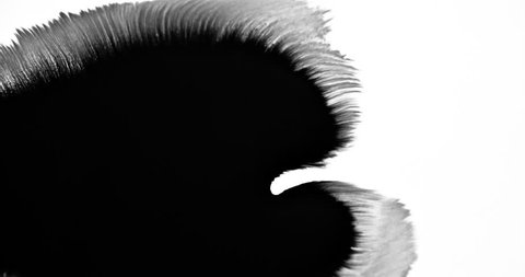 Pretty black ink mixing with white background to use as effects in projects