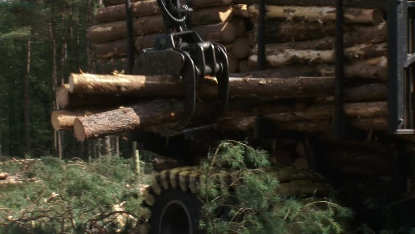 gathering + loading timber on logging truck (valmet 840-3) close up