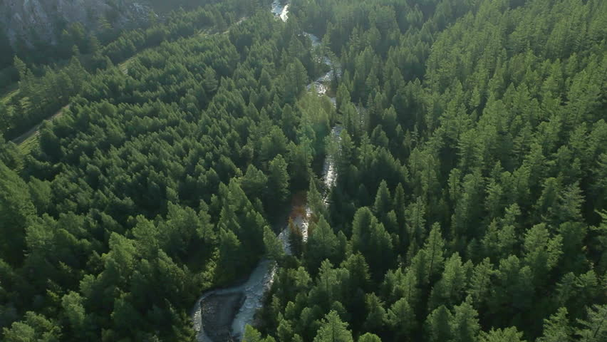 Aerial View. Flying over the beautiful mountain River and beautiful forest. Aerial camera shot. Altai, Siberia. #3213778