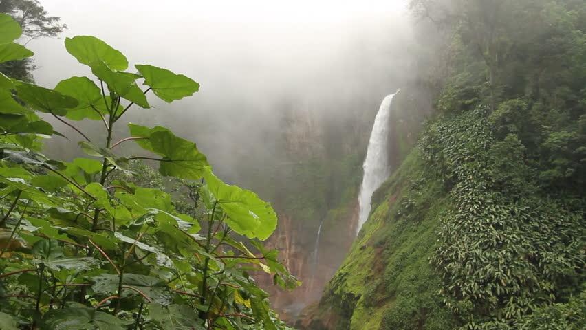 Toro Falls, Catarata del Toro, in cloud forest, Costa Rica