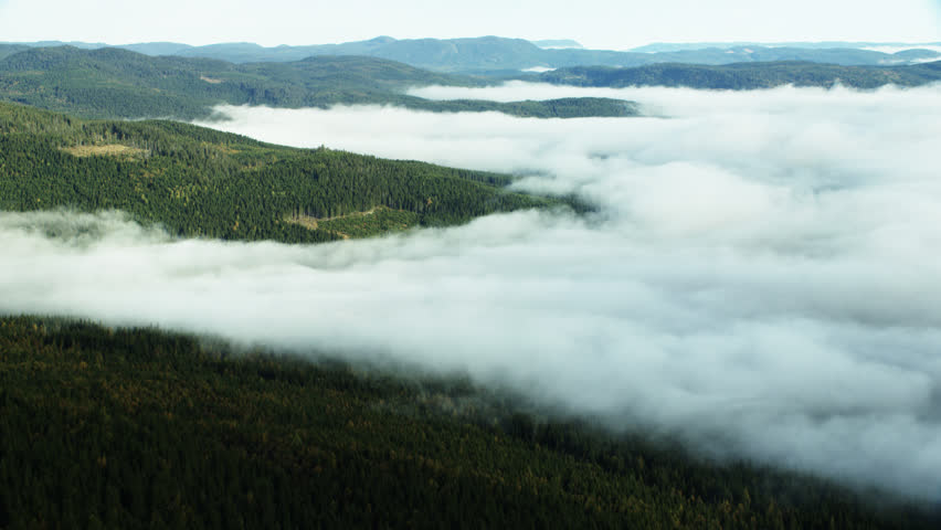 Aerial shot of foggy area in Norway | Shutterstock HD Video #32299996
