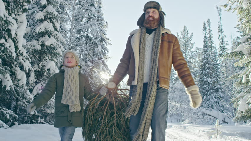 Dolly with tilt up of happy bearded father and little boy carrying cut Christmas tree along snowy footpath in white forest and enjoying scenery on sunny winter day | Shutterstock HD Video #32317396