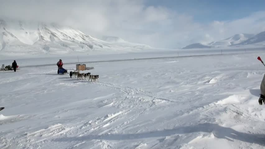 Spitsbergen, Norway-21 April 2011: People expedition on dog sled team husky Eskimo road of North Pole in Arctic. Way from airport Longyear to Pyramiden on background of glacier mountains Svalbard. | Shutterstock HD Video #32368156