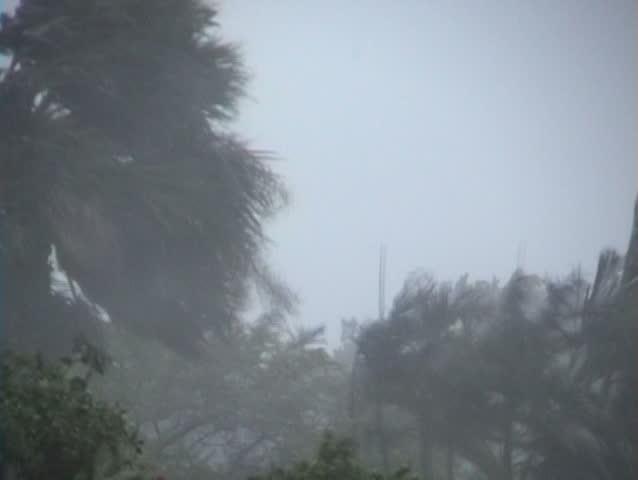 Hurricane winds and rain.