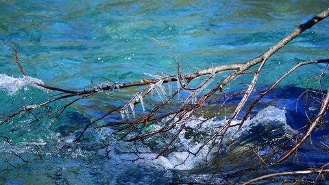 Icicles found in Azusagawa river