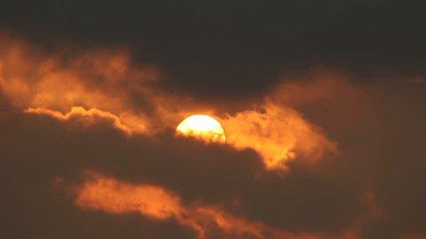 Flock of birds between clouds in sunlight of shining sky