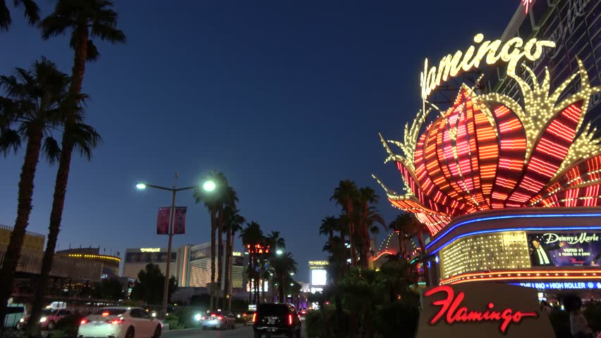 Casino las vegas videos mary mcgovern procter and gamble