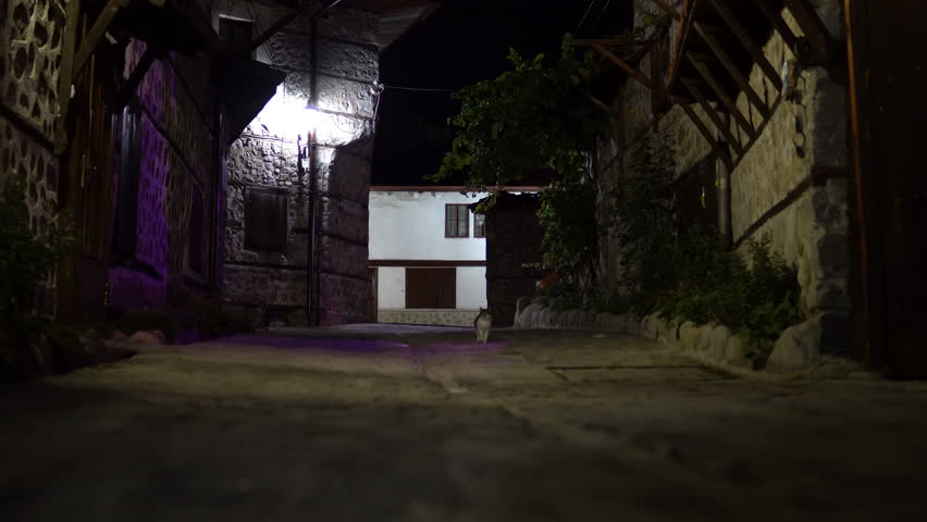 Cats at vintage dark alley at night. Old house and street architecture in Bansko, Bulgaria