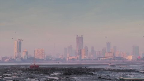 View of a city skyline covered in smog during the morning while low tide sea and birds are flying in the foreground, Mumbai, India