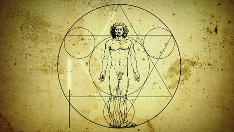 Animation Sketch Vitruvian Man by Leonardo da Vinci