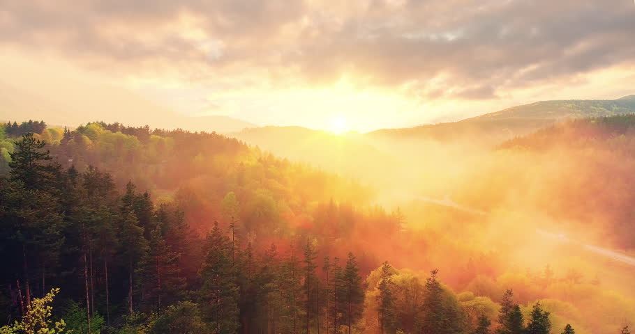 Epic Aerial Flight Over Mist Forrest Sunset Colorful Autumn Trees Golden Hour Sunset Colors Epic Glory Inspiration Hiking And Tourism Concept