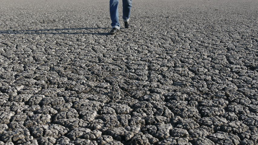 Walking >> Dryness land Footage #page 2   Stock Clips